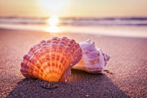 Sarasota Morning Brings New Awareness of Closure after Breast Cancer.
